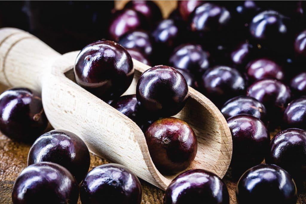 Jaboticaba fruit méconnu