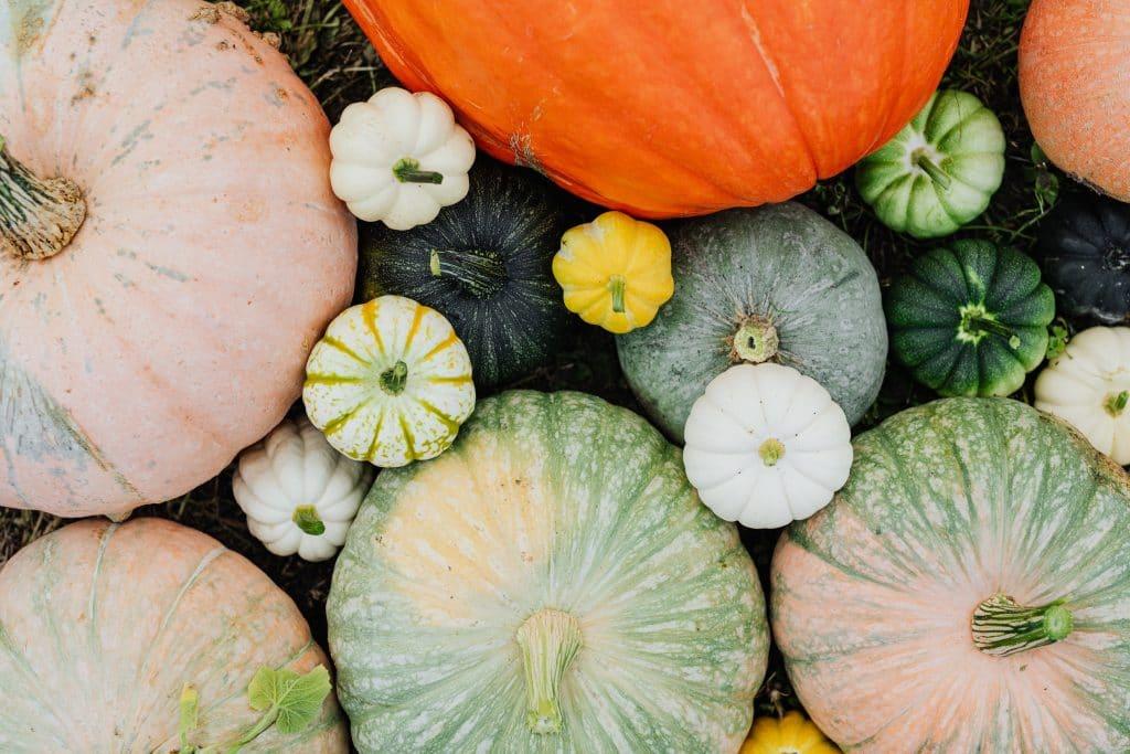 légumes d'automnes