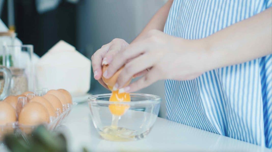 manger omelette enceinte